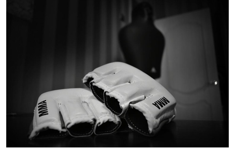Best MMA Gloves Reviewed & Rated