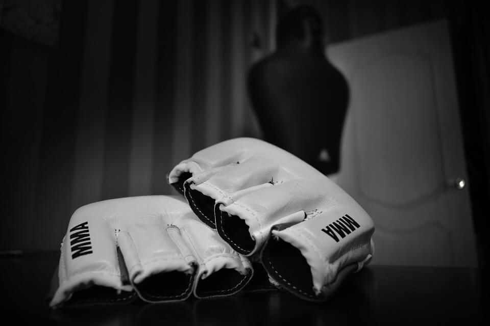 An in Depth Review of the Best MMA Gloves in 2018