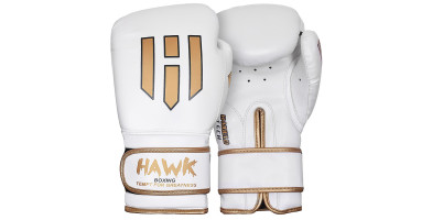 An In Depth Review of Hawk Boxing Gloves in 2018