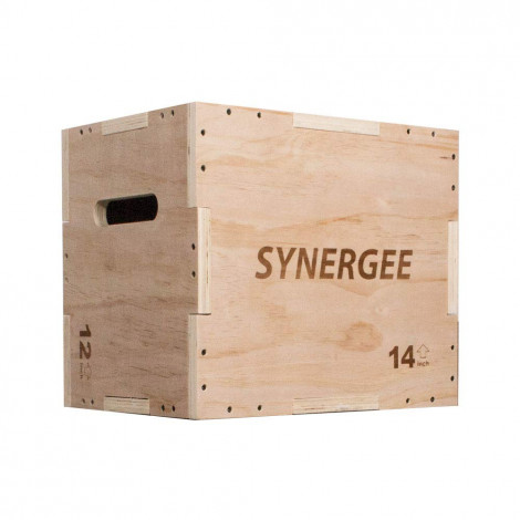 Synergee Plyo Boxes