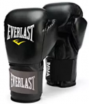 Mixed Martial Arts Sparring Everlast Gloves