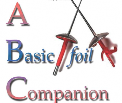 A Basic Foil Companion fighting report