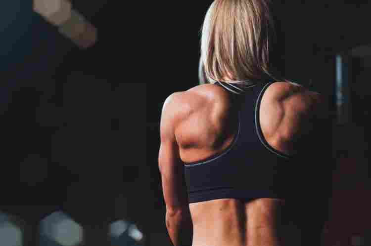 Back Best Sports Bras