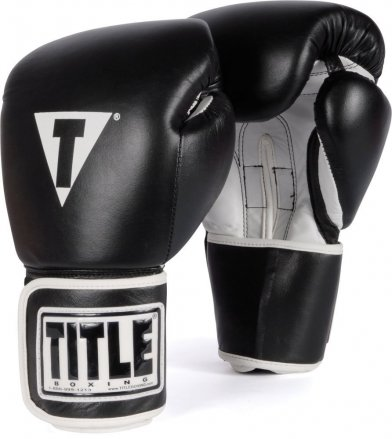 An in Depth Review of the TITLE Boxing Pro Style Boxing Gloves of 2018