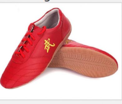 SNLMY Kung Fu Shoes